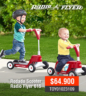 Scooter Radio Flyer